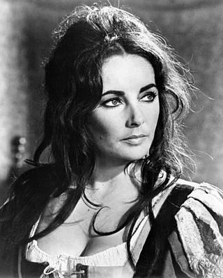 Elizabeth Taylor In The Taming Of The Shrew  Poster by Silver Screen