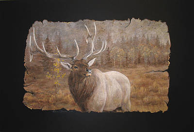 Elk Poster by Melissa Unruh