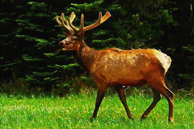 Elk Portrait Poster by Ayse Deniz