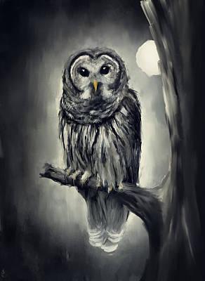 Elusive Owl Poster by Lourry Legarde