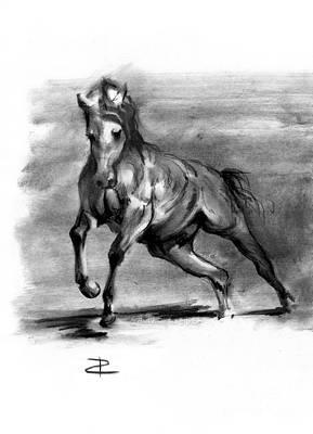 Equine IIi Poster by Paul Davenport