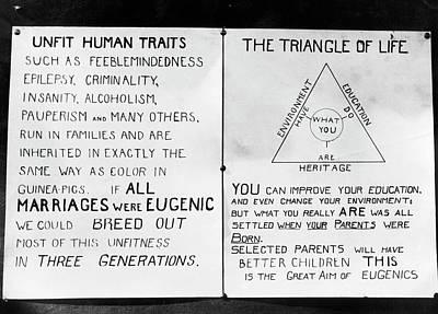 Eugenics Posters At Public Fair Poster by American Philosophical Society