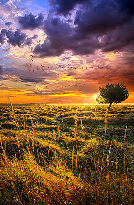 Every Story Has A Beginning Poster by Phil Koch