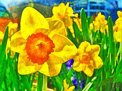 Extreme Daffodil Poster by Digital Photographic Arts