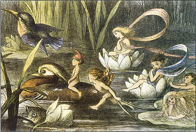 Fairies And Water Lilies Circa 1870 Poster by Richard Doyle