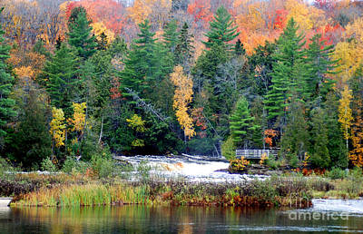Fall Colors On The  Tahquamenon River   Poster by Optical Playground By MP Ray