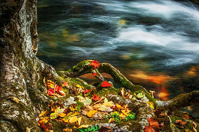 Fall Colors Stream Great Smoky Mountains Painted  Poster by Rich Franco