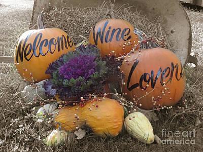 Fall Display At Lost Acres Vineyard Poster by John Turek