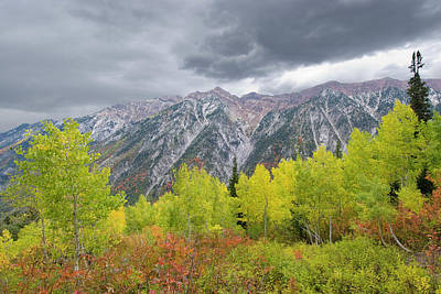 Fall Foliage In Little Cottonwood Poster by Howie Garber