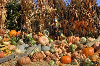 Fall Harvest Poster by Joann Vitali