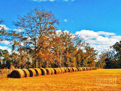 Fall Hayfield Poster by M Glisson