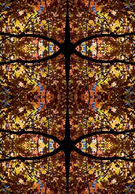Fall Leaf Kaleidoscope Poster by Steven Ralser