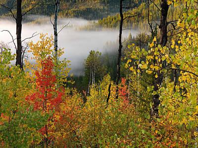 Fall Morning 2 Poster by Leland D Howard