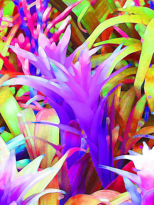 Fantasy Bromeliad Abstract Poster by Margaret Saheed
