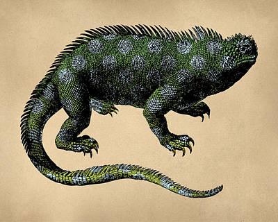 Fantasy Iguana Vintage Illustration Poster by Flo Karp