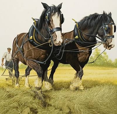 Farm Horses Poster by David Nockels
