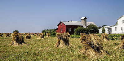 Farming Amish Style Cropped Poster by Kathy Clark