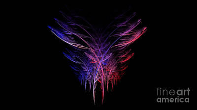 Feathers In Motion Poster by Amanda Collins