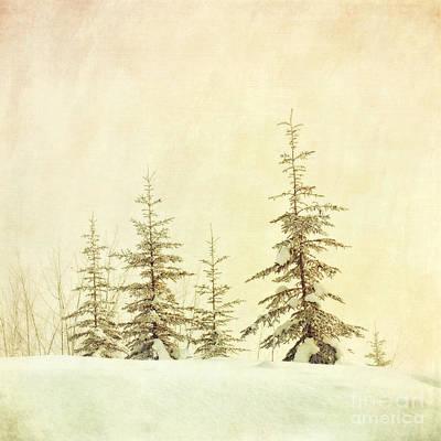 Winter's Mist Poster by Priska Wettstein