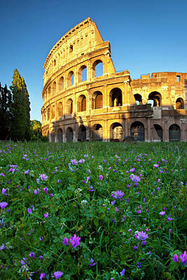 Field Of Wildflowers Below The Roman Poster by Brian Jannsen