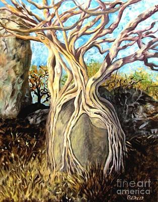 Fig Tree Poster by Caroline Street