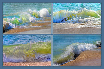 Topsail Poster featuring the photograph Find Your Inspiration by Betsy C Knapp