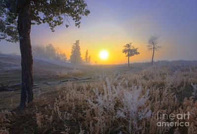 First Frost Poster by Dan Jurak