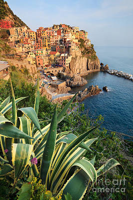 Fishing Village Of Manarola Cinque Terre Italy Poster by Matteo Colombo