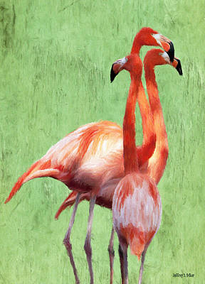 Flamingo Twist Poster by Jeff Kolker