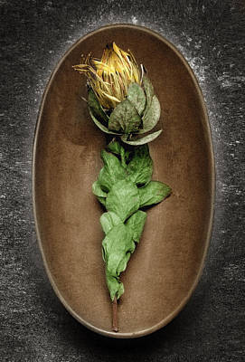 Flower And Bowl Poster by Tony Ramos