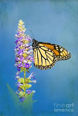 Flower Love Poster by Betty LaRue