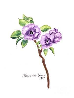 Flowering Quince Poster by Marsha Heiken