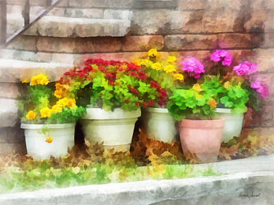 Flowerpots With Autumn Flowers Poster by Susan Savad
