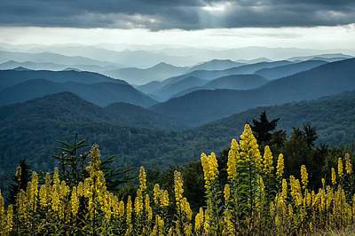 Flowers And Mountains Poster by Rob Travis
