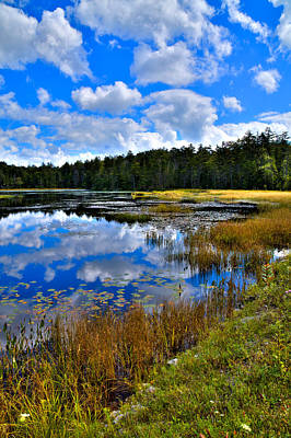 Fly Pond In The Adirondacks II Poster by David Patterson