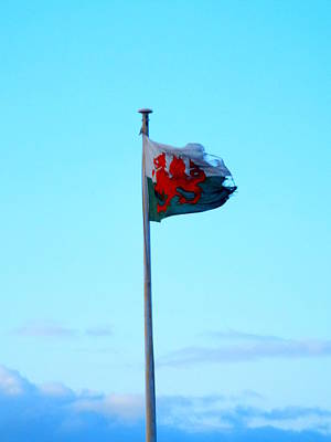 Flying The Flag Poster by Brainwave Pictures