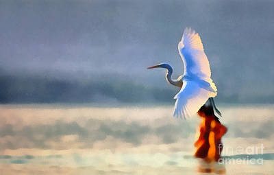 Flying White Egret Poster by Odon Czintos