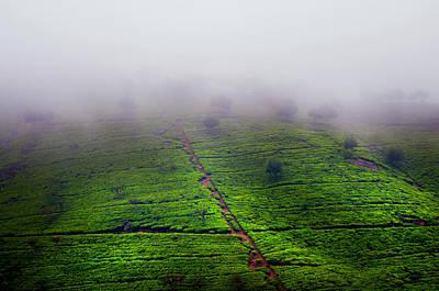Fog Over Tea Plantations. Sri Lanka Poster by Jenny Rainbow