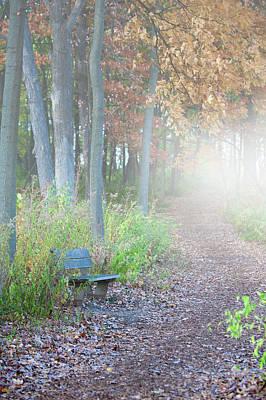 Foggy Autumn Morning Poster by Sebastian Musial