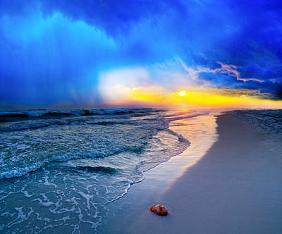 foggy blue sunrise - sea shell on Pensacola Beach Florida Poster by Eszra Tanner
