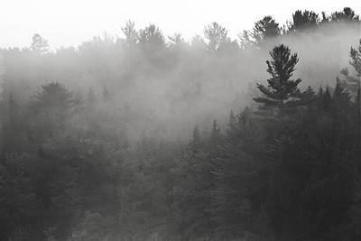 Foggy Hillside - Norway - Maine Poster by Steven Ralser