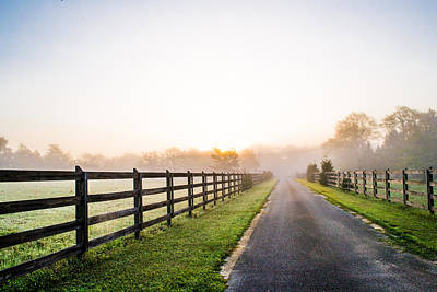 Foggy Path At Sunrise Poster by Shelby  Young