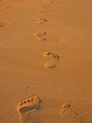 Footprints In The Sand Poster by Andreas Thust