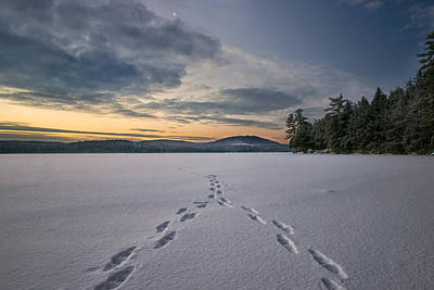 Footsteps In The Snow Poster by Darylann Leonard Photography