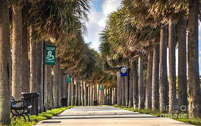 Fort Pierce Florida Poster by Liesl Marelli