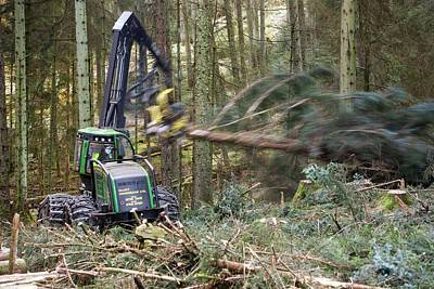 Forwarder Forestry Vehicle Poster by Ashley Cooper