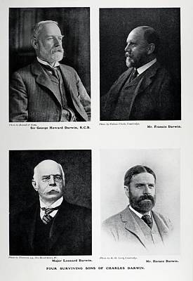 Four Sons Of Charles Darwin Poster by Paul D Stewart