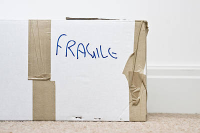 Fragile  Poster by Tom Gowanlock
