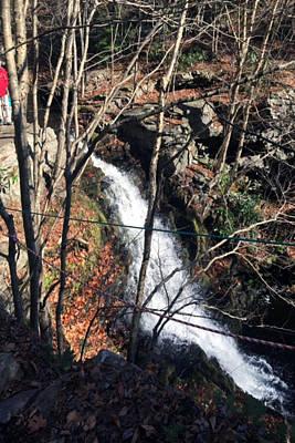 Fresh Water Streams Around Poconos Pa America Usa  Poster by Navin Joshi