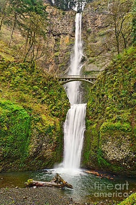 Full View Of Multnomah Falls In The Columbia River Gorge Of Oregon Poster by Jamie Pham